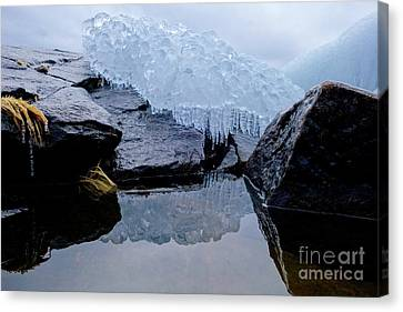 Icy Reflections Canvas Print by Sandra Updyke