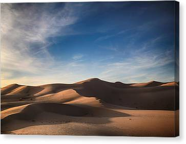 I'd Walk A Thousand Miles Canvas Print by Laurie Search