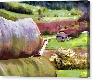 Idyllic Rural Austria Canvas Print by Menega Sabidussi