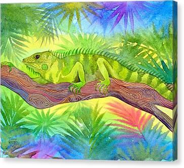 Iguana Canvas Print by Jennifer Baird
