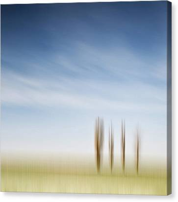 ____iiii_ Canvas Print by Heiko Gerlicher