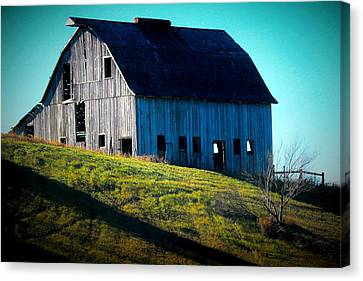 Illinois Heritage Canvas Print by Laura Birr Brown