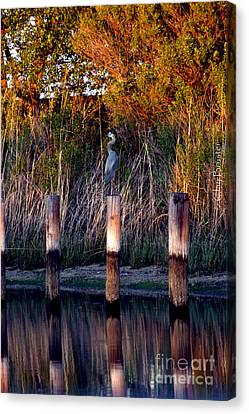 Illusion Canvas Print by Clayton Bruster