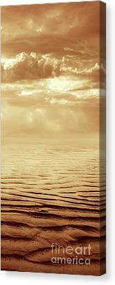 Illusion Never Changed Into Something Real Canvas Print by Dana DiPasquale
