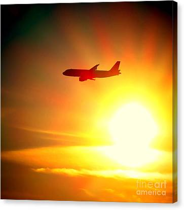 In Flight Canvas Print by Olivier Le Queinec