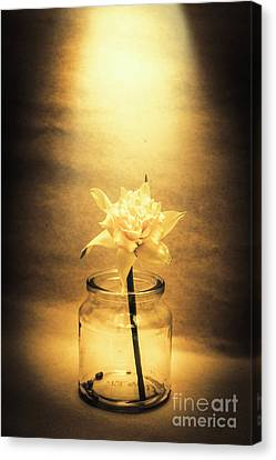 In Light Of Nostalgia Canvas Print by Jorgo Photography - Wall Art Gallery