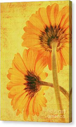 In Summertime Canvas Print by Angela Doelling AD DESIGN Photo and PhotoArt