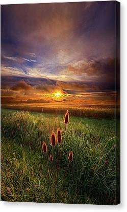 In The Eye Of The Beholder Canvas Print by Phil Koch