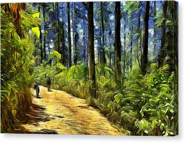 In The Forests Of El Rosario Canvas Print by Jean-Marc Lacombe