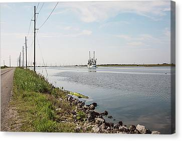 In The Passing Lane Canvas Print by Scott Pellegrin