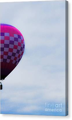 In The Sky Canvas Print by Victory  Designs