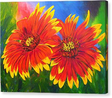 Indian Blanket Flowers Canvas Print by Mary Jo Zorad