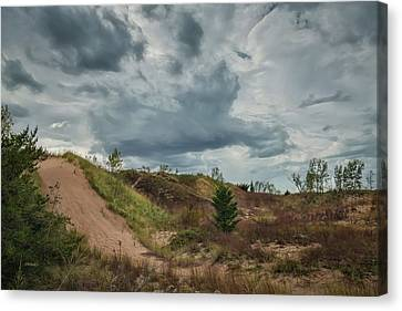 Indiana Dunes Canvas Print by John M Bailey