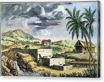 Indigo Plantation Canvas Print by Granger