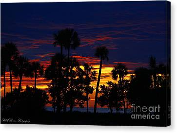 Indigo Sunset Canvas Print by Barbara Bowen