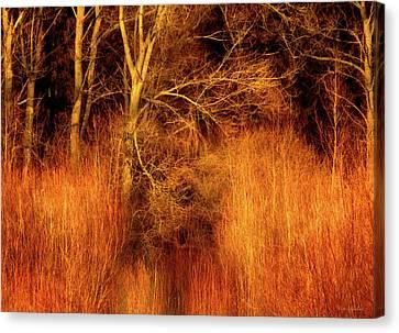 Inferno Canvas Print by Wim Lanclus