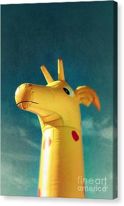 Inflatable Toy Canvas Print by Carlos Caetano
