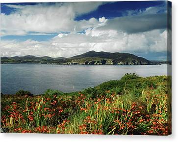 Inishowen Peninsula, Co Donegal Canvas Print by The Irish Image Collection
