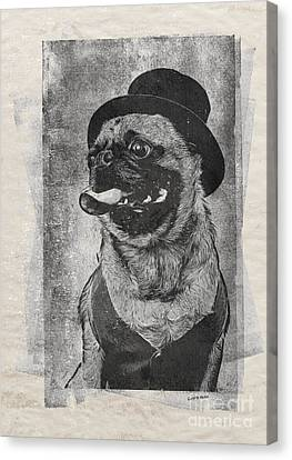 Inky Pug Canvas Print by Edward Fielding