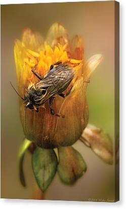 Insect - Bee - Dare To Bee Different Canvas Print by Mike Savad