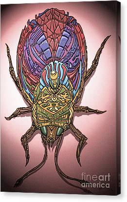 Insect Canvas Print by Oliver Betsch