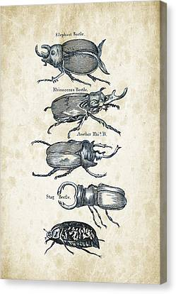 Insects - 1792 - 01 Canvas Print by Aged Pixel