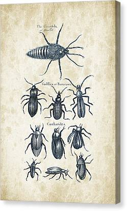 Insects - 1792 - 04 Canvas Print by Aged Pixel