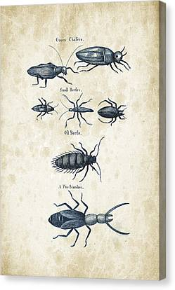 Insects - 1792 - 05 Canvas Print by Aged Pixel