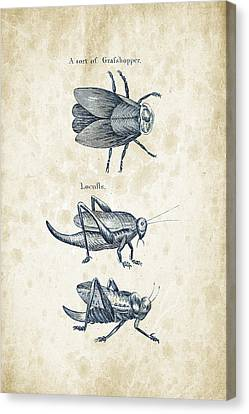 Insects - 1792 - 08 Canvas Print by Aged Pixel