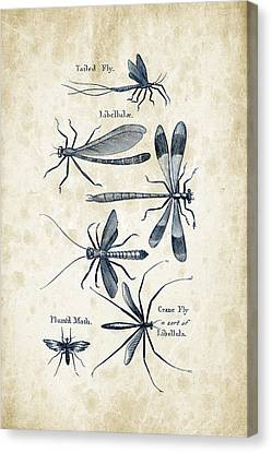 Insects - 1792 - 11 Canvas Print by Aged Pixel