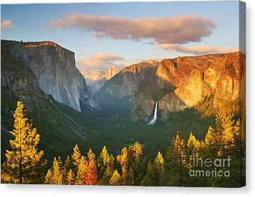 Inspiration Point Yosemite Canvas Print by Buck Forester