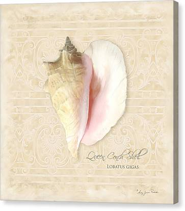 Inspired Coast I  - Queen Conch Shell Loratus Gigas Canvas Print by Audrey Jeanne Roberts