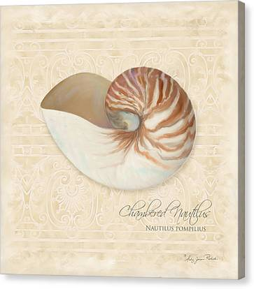 Inspired Coast Iv - Chambered Nautilus, Nautilus Pompilius Canvas Print by Audrey Jeanne Roberts