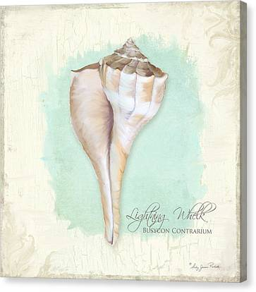 Inspired Coast Vii - Lightning Whelk Shell On Board Canvas Print by Audrey Jeanne Roberts