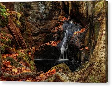 Intimate Autumn Waterfall Canvas Print by John Vose