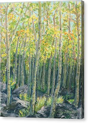 Into The Aspens Canvas Print by Mary Benke