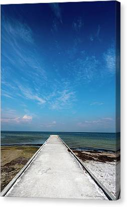 Into The Blue Canvas Print by Marvin Spates