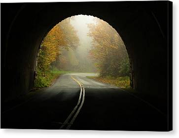 Into The Fall Blue Ridge Parkway North Carolina Canvas Print by Terry DeLuco