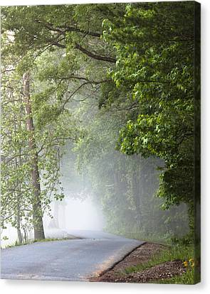 Into The Fog Canvas Print by Andrew Soundarajan