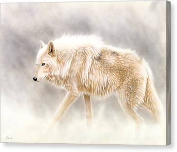 Into The Mist Canvas Print by Sandi Baker