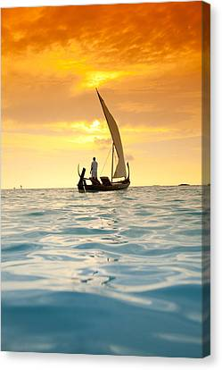 Into The Sunset Canvas Print by Sean Davey