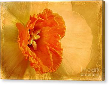 Inviting Canvas Print by Lois Bryan