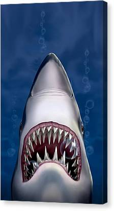 iPhone - Galaxy Case - Jaws Great White Shark Art Canvas Print by Walt Curlee