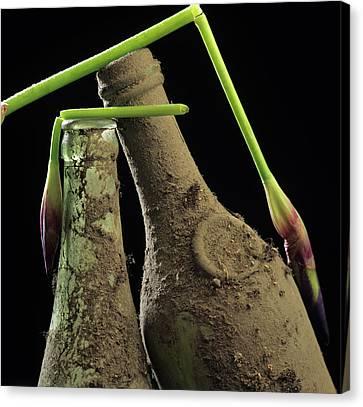 Iris And Old Bottles Canvas Print by Bernard Jaubert