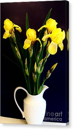 Iris Bouquet Canvas Print by Marsha Heiken