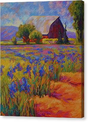 Iris Field Canvas Print by Marion Rose