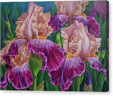 Iris Garden 2 Canvas Print by Fiona Craig