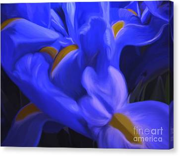 Iris Sparkle Canvas Print by Roxy Riou