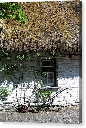 Irish Farm Cottage Window County Cork Ireland Canvas Print by Teresa Mucha