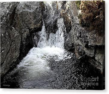 Irish Waterfall Canvas Print by Patrick J Murphy
